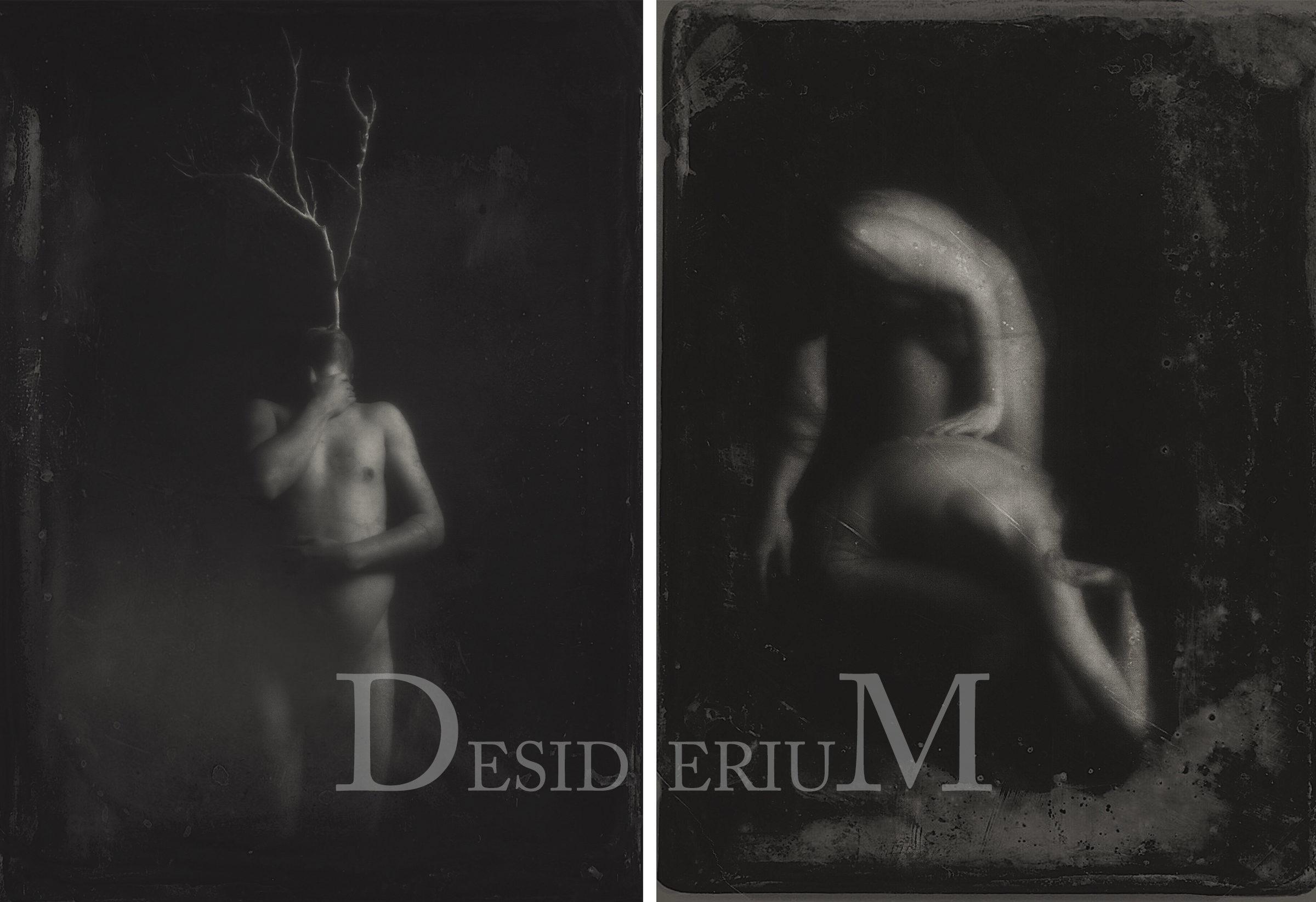 Desiderium - Sarah Pezdek - Artist
